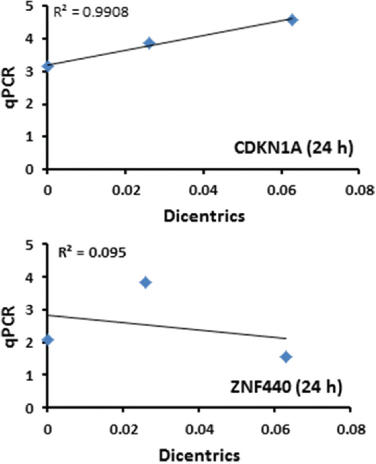 Figure 5: Linear regression correlation plots between dicentric chromosomal aberration and quantitative polymerase chain reaction identified radiation response gene (24 h) dose–response curves for genes CDNK1A (top) and ZNF440 (bottom). The values of correlation coefficience (<i>r</i><sup>2</sup>) were 0.9908 and 0.095, respectively